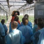 Экскурсия Витомания в агрохолдинге Московский